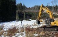 Fort St. John Powerline Construction Monitoring